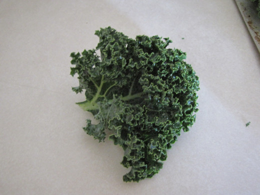 Cut kale into chip size pieces.