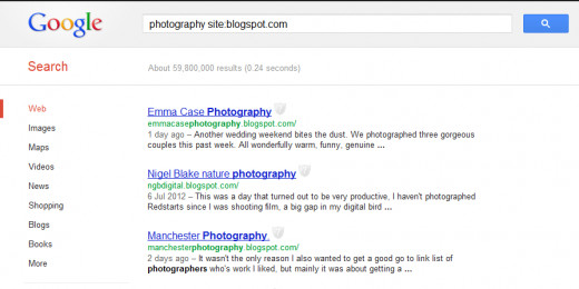 "The result of googling ""photography site:blogspot.com"""