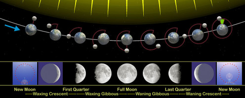 Lunar Cycles explained