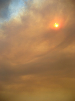 What can you do about bad air quality due to forest fires?