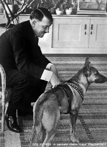 "Have you heard that dogs are good judges of character? Consider this photo of a smiling Adolf Hitler with his faithful dog ""Blondie"". This (very) German Shepherd apparently boosts serotonin levels even as much as attempting world domination."