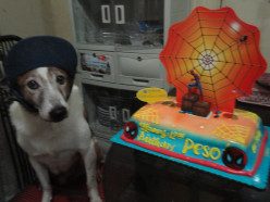 For my 100th hub, I would like to focus on the 12th Birthday of my dog Mario Peso