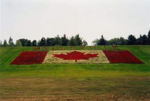 Flowerbed, Belleville, Ontario