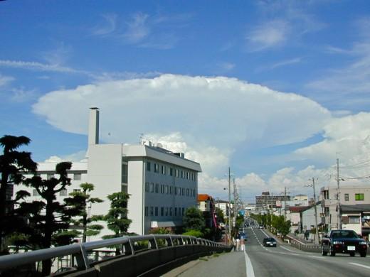 A cumulonimbus cloud that has reached the tropopause and is spreading out in a mushroom shape