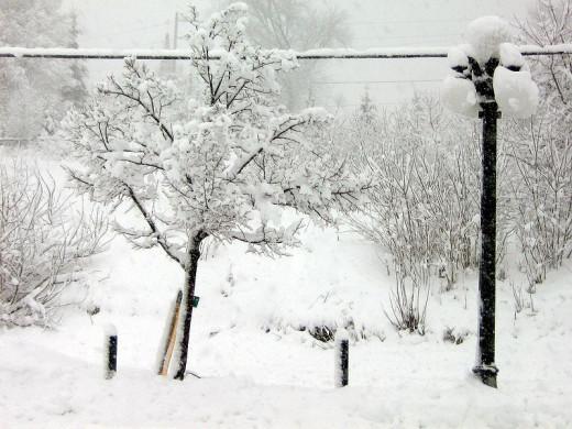 After A Snow Storm