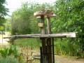 The HubPages Birdwatcher's Club:  Back Yard Birding