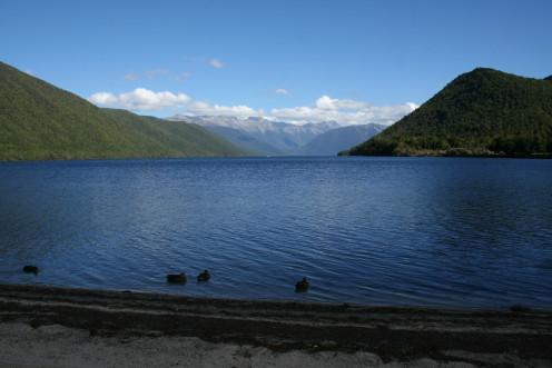 Nelson Lakes National Park, South Island, New Zealand