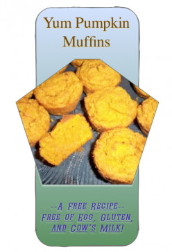 Pumpkin Muffins: Egg Free, Milk Free, Gluten Free, And Yum!