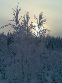Coldest winter...