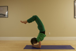 Vrishikasana, or Scorpion, is an advanced inversion that strengthens the upper body, relaxes the heart, reverses the effects of gravity on the body, and tones the organs.