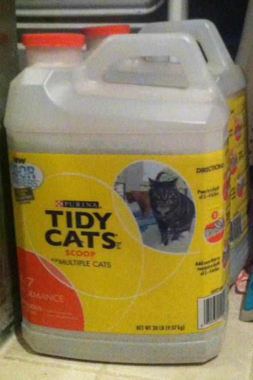 Tidy Cat Clumping Litter