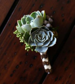 Using Succulents As Wedding Decor