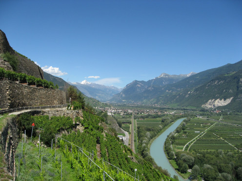 Vineyards along the Rhone River in the Swiss Canton of Valais
