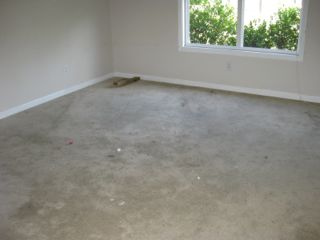 pic of dirty carpet