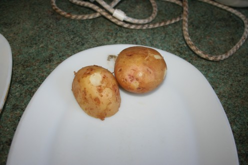 Potatoes served out and ready for eating.