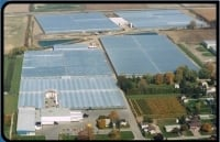 Aerial of Leamingtons Greenhouse farms