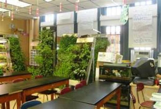 Inside Ritz's classroom