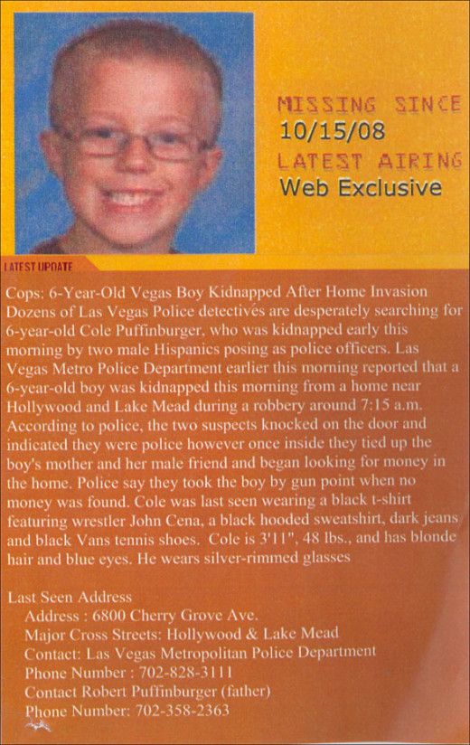 Cole Puffinburgers missing child flyer