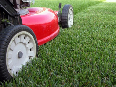 you may want to consider using Scotts lawn care for your needs.