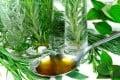 A Look at Alternative Medicine