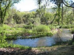 Sierra mountain stream, not far from Mt. Whitney in the sierra range of California.