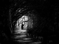 Poetry: Darkness Falls