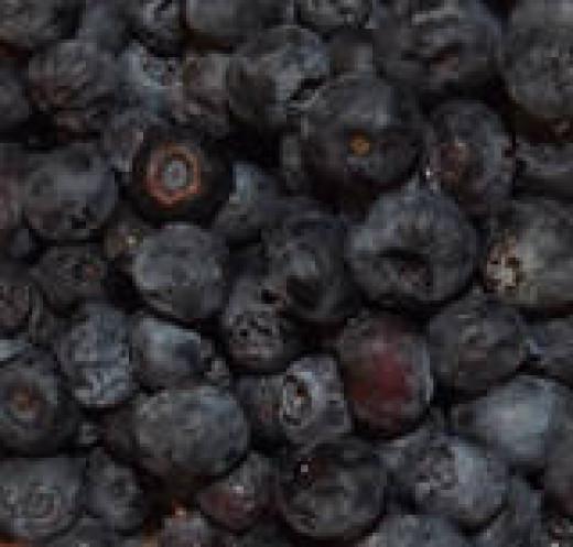 Yum blueberries!