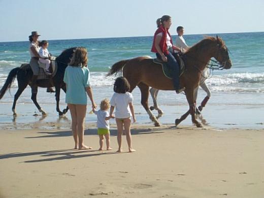 The beaches of Uruguay