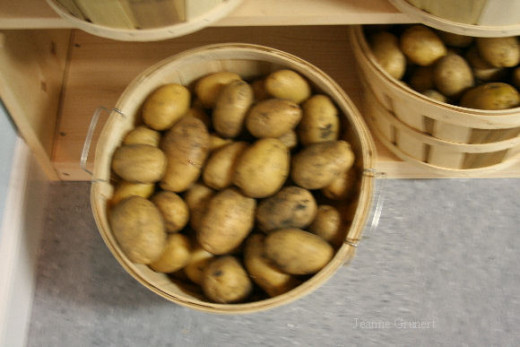Basket of organic Yukon Gold potatoes.