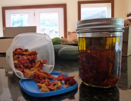 Store dried tomatoes in the freezer.  Olive oil soon takes on that consintrated tomato flavor of dehydrated tomatoes.