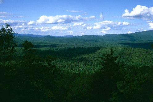 View from Panther Trail, Adirondack State Park, New York