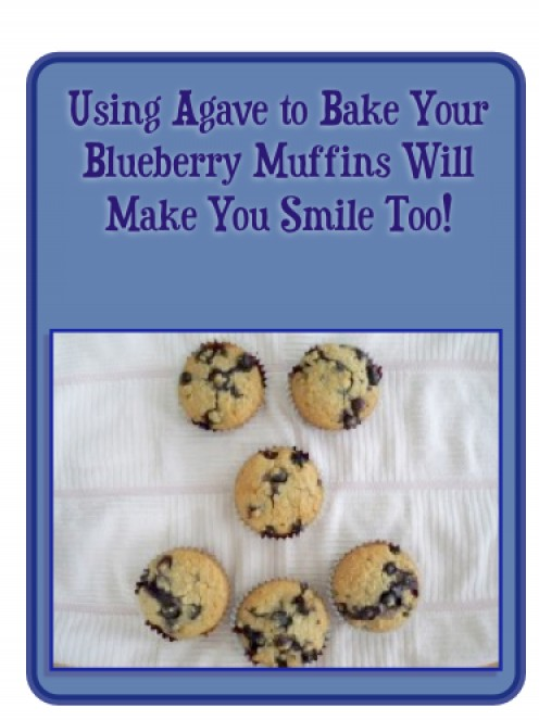 Blueberry Muffins Sweetened With Agave