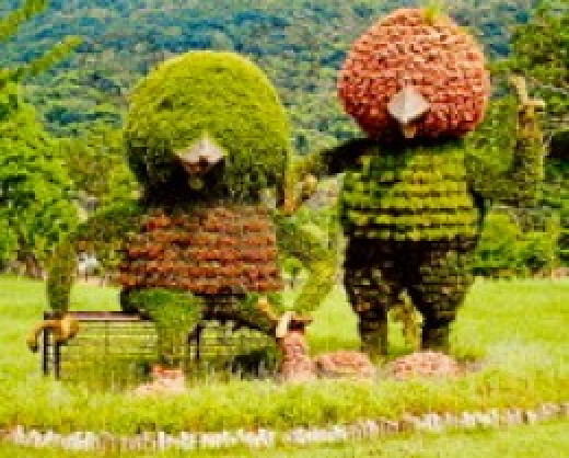 Delightful planters for children to enjoy in a park in Taipei