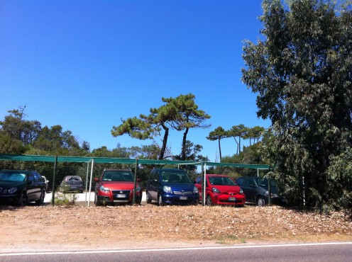 Parking Along the Beaches of the Giannella Maremma Tuscany