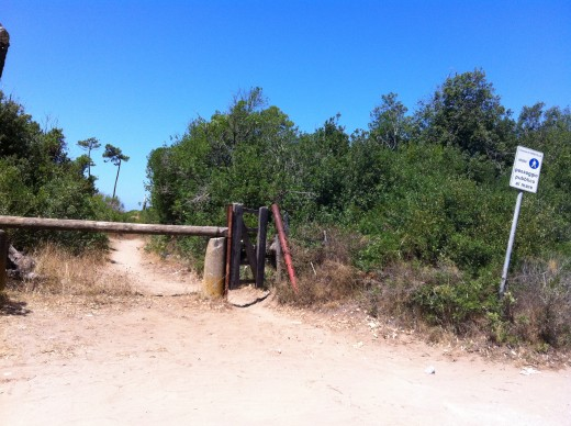Public Footpath to the Beach along the Giannella Road Tuscany