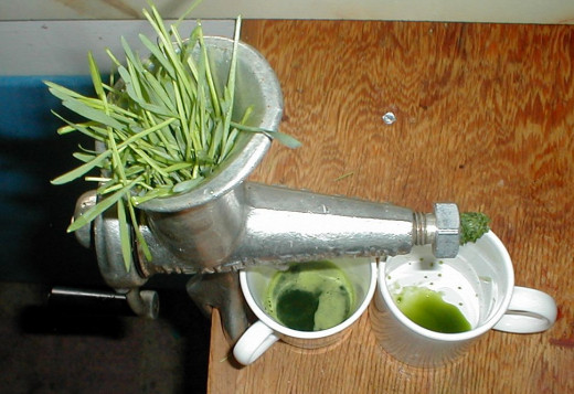 Juicing is good for you! Here is a wheat grass juicer.
