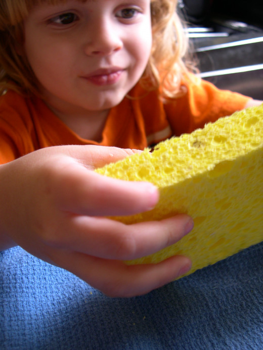 Closely watch kids who eye their sponges like cake!
