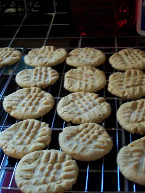 Delicious Easy Homemade Peanut Butter Crisscross Cookie Recipe With Frosting.