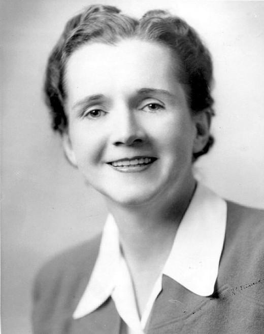 Rachel Carson as a government employee.