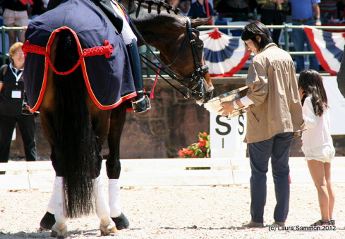 HORSES WIN AWARDS ALL OF THE TIME.