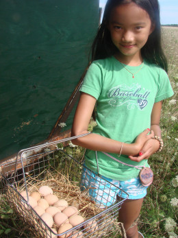 Having fresh eggs available for the kids to collect was a huge boon to our Iron Chef in the Garden activity!