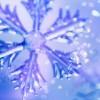 snowdrops profile image