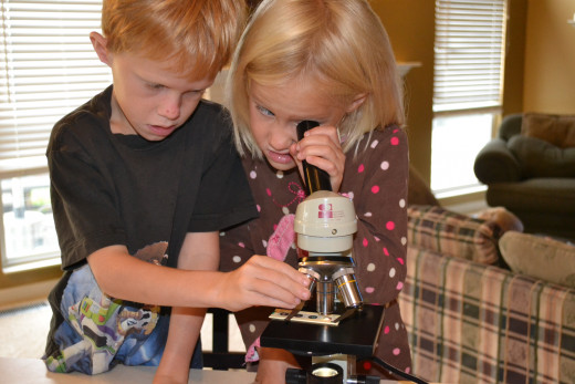 Our kids love the microscope I received for free on freecycle.org