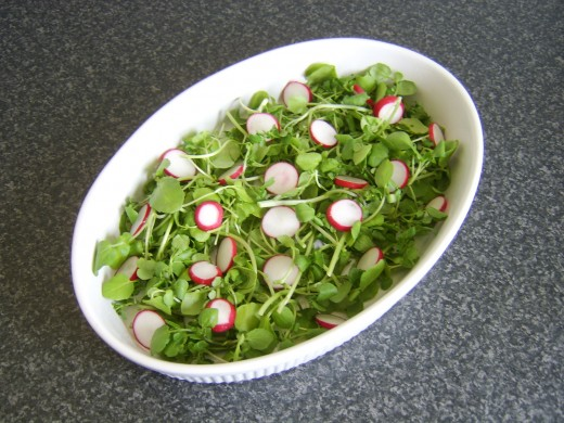 Sliced radishes are arranged on the watercress