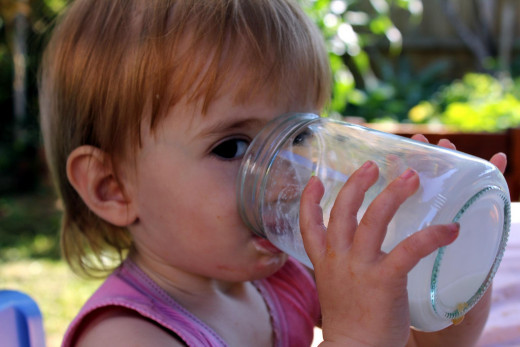 Low Fat Milk is an excellent source of Calcium and Vitamin D for your 2 Year Old