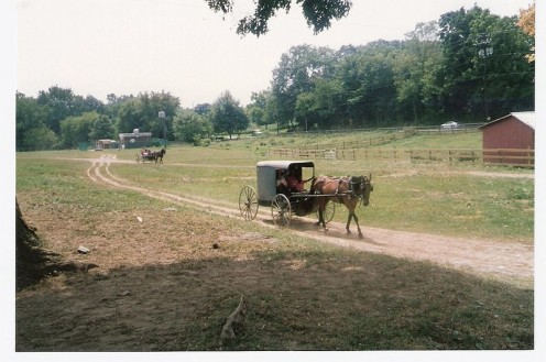 Amish farmland.