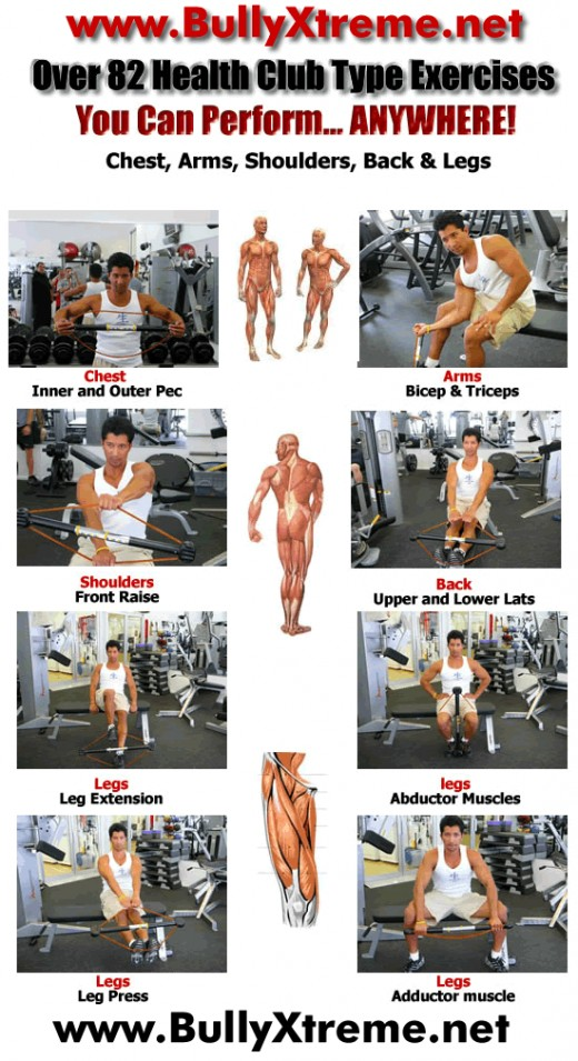 Bowflex Exercises Chart
