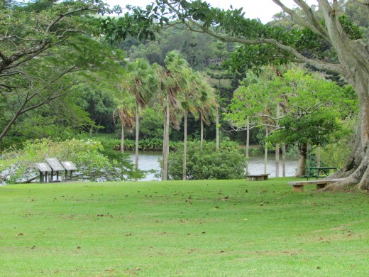 The lake at Hoomaluhia