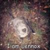 abrown6597 profile image