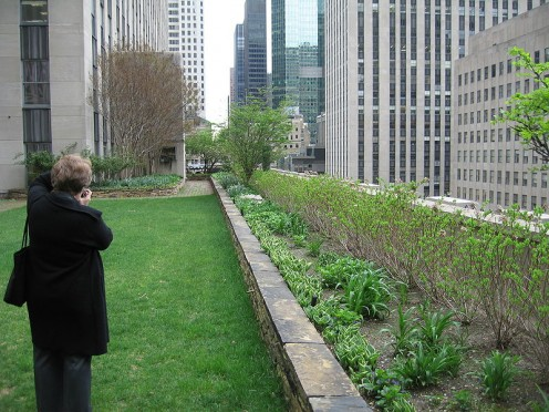 This garden tops the Rockefeller Center in Manhattan, New York.